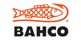 bacho-logo www.proffpartnerfloro.no